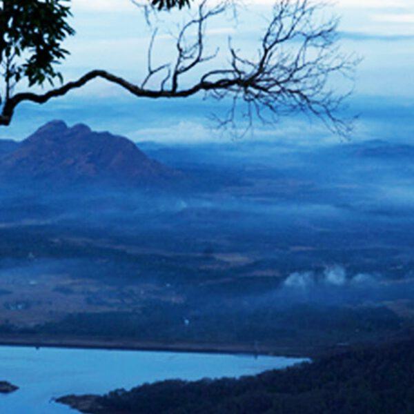 palakkad district, nelliyampathi hills, kerala tourism, hill stations, india tourism
